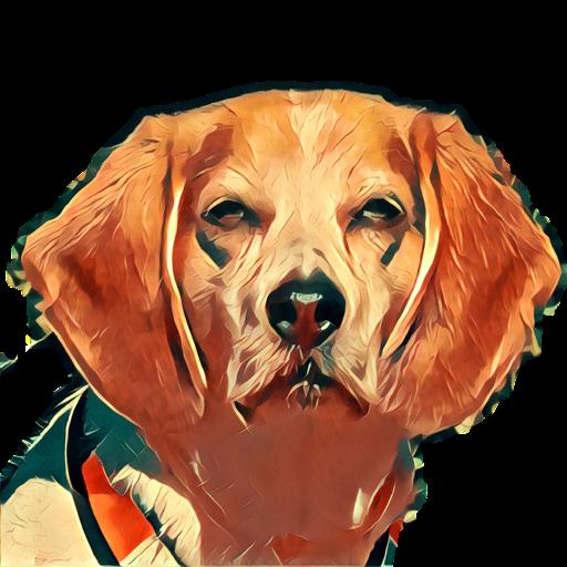 Beagle IM