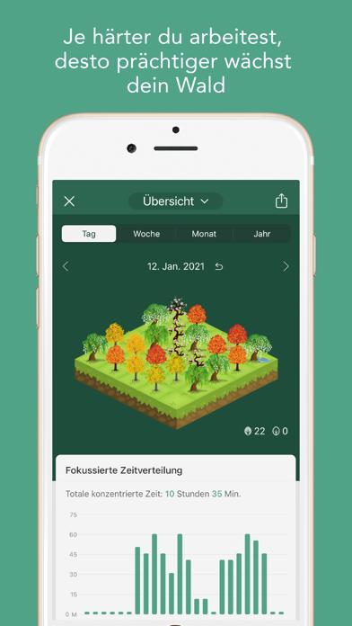 Forest - Bleib fokussiertScreenshot von 4