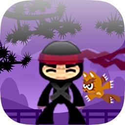The Ninja vs Cats Adventure