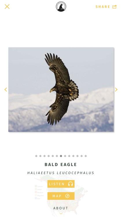 NWF Guide to Birds screenshot-4