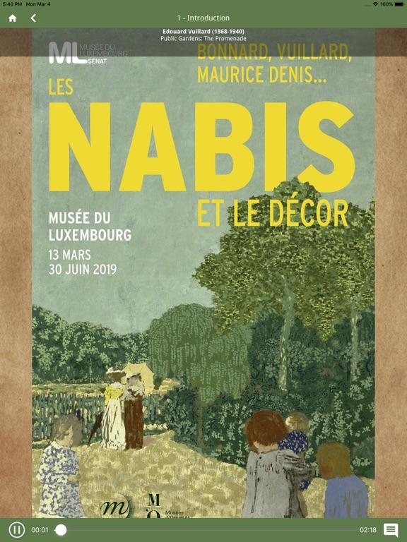 Nabis screenshot 10