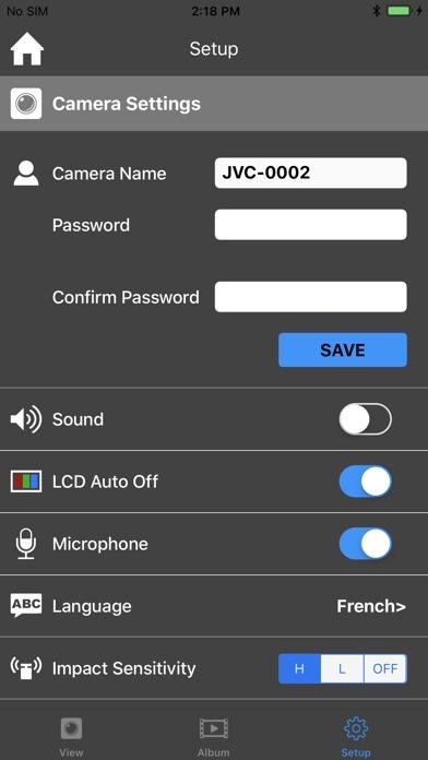 JVC Dashcam