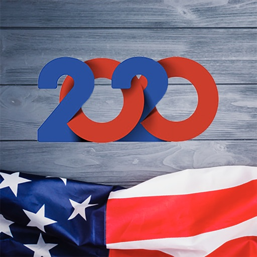 2020 US Election Simulator