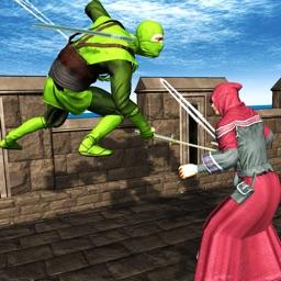 Ninja Warrior Samurai Assassin