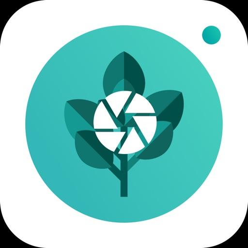 PlantFinder - Quick identifier