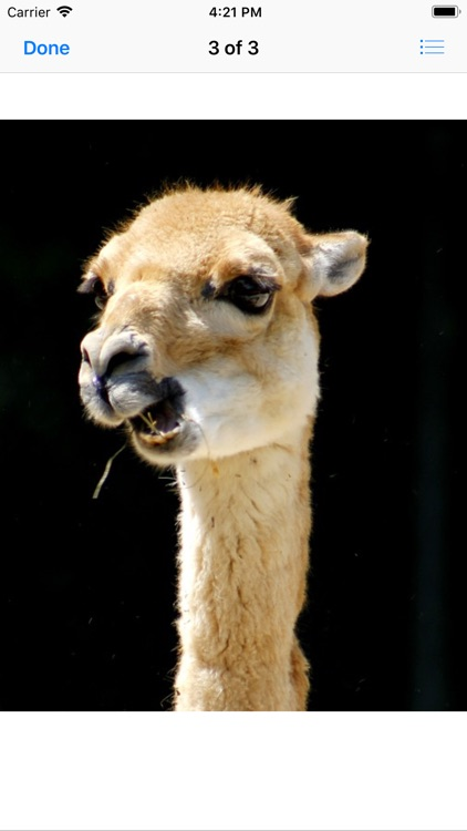Llama Photography screenshot-8
