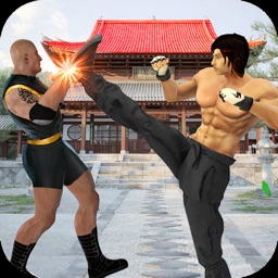 Real Superheroes Kung fu fight