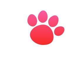 Pet Health App