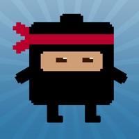 Codes for Ninja Temple Hack