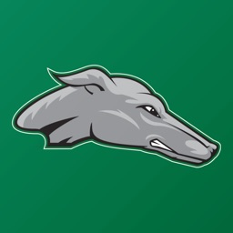 ENMU Athletics