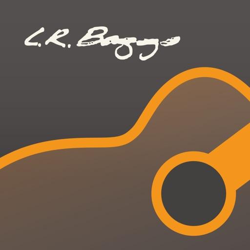 LR Baggs AcousticLive