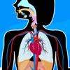 Anatomix - iPhoneアプリ