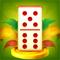 App Icon for KOGA Domino App in Viet Nam IOS App Store