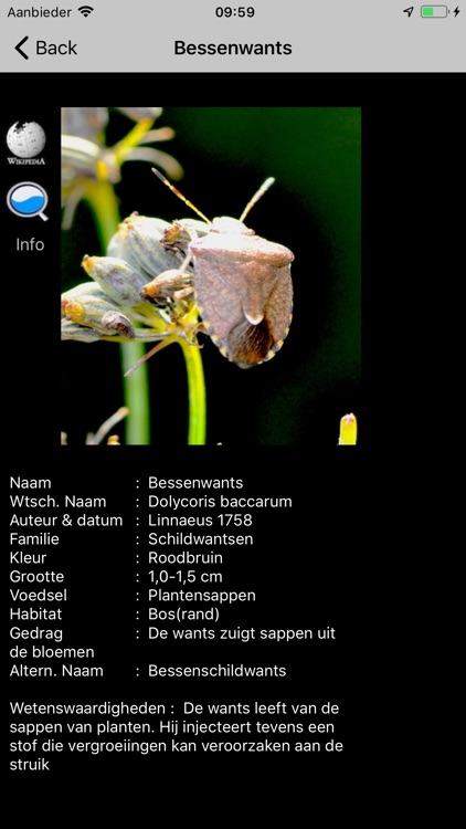Insecten screenshot-2