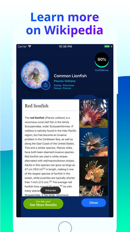 Fish Identifier screenshot-4