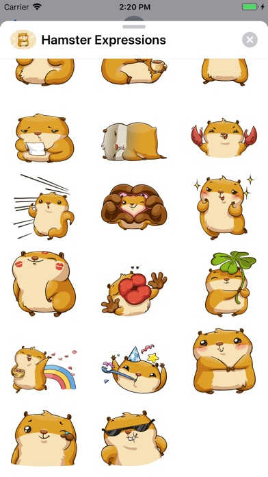 Screenshot for Hamster Expressions in Netherlands App Store