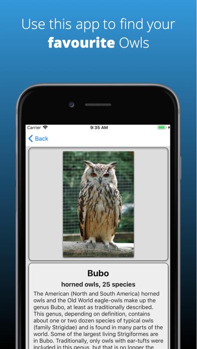 点击获取Owl Dictionary