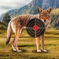 Codes for Coyote Target Shooting Hack