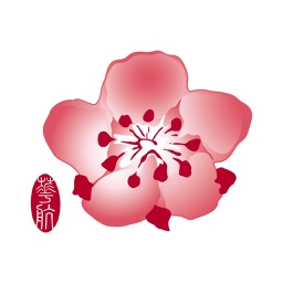 China Airlines App