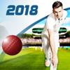 Childish Things Ltd - Cricket Captain 2018 artwork