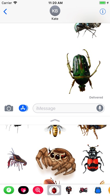 Great Insects Stickers