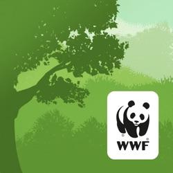 WWF森林