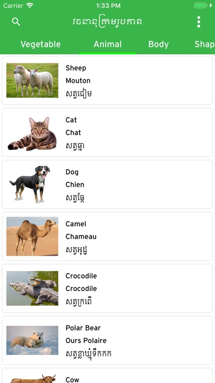 Khmer Picture Dictionary screenshot-3