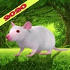 Forest wild Mouse Simulator - iPadアプリ