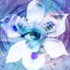 Blue Iris - Ken Pletzer Cover Art