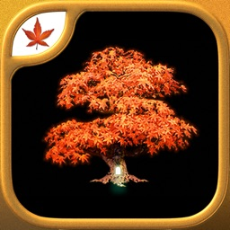 Fire Maple Games - Collection