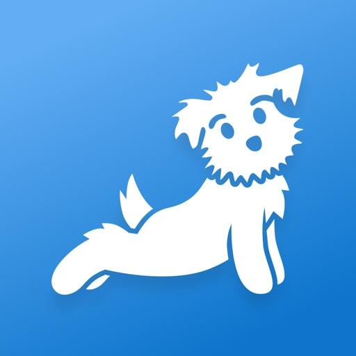 Yoga   Down Dog