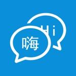 translators - voice and photo