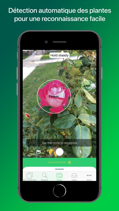 PlantSnap - Identifier plantes