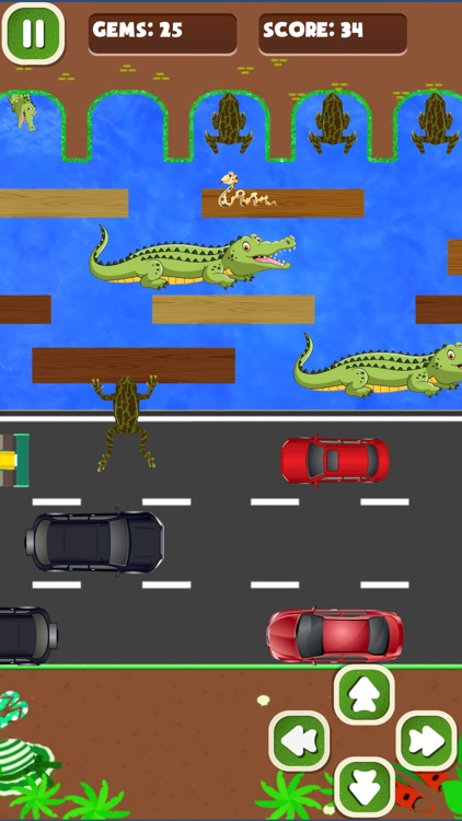 Journey of Amazing frogger screenshot-4
