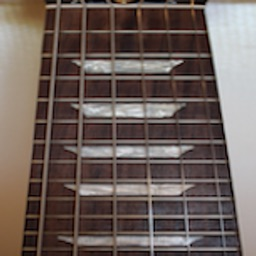 Electric Guitar Fret Addict
