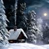 Christmas Radio - iPhoneアプリ
