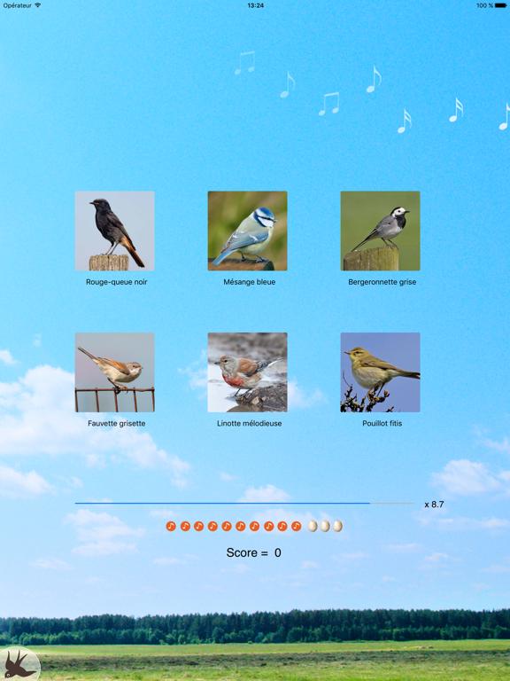 Cui-cui! Chants d'oiseaux