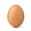 World Record Egg Breaker