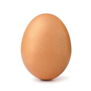 World Record Egg Breaker - Games app