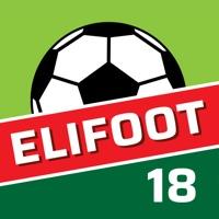 Codes for Elifoot 18 PRO Hack