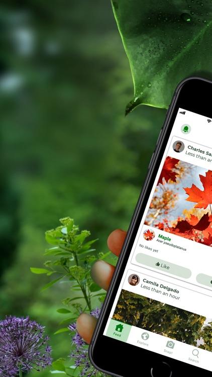 PlantSnap - identify plants