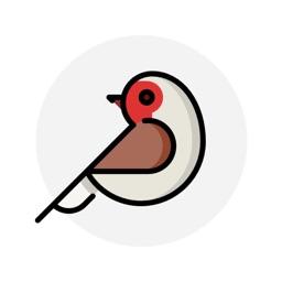 Cuckoo Timer