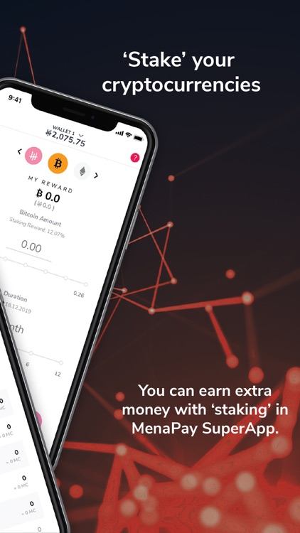 MenaPay screenshot-6