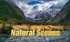 Natural Scenes 4K download