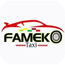 Fameko Taxi Driver