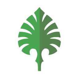 Sabal Palm Mobile for iPad