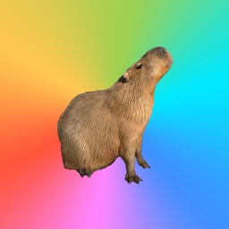 Capybara Stickers for Messages