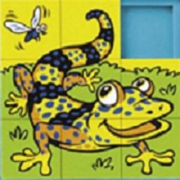 Funny Sliding Puzzle - Classic