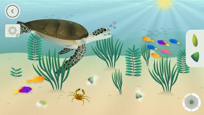 タイニーポップによるサンゴ礁のおすすめ画像5