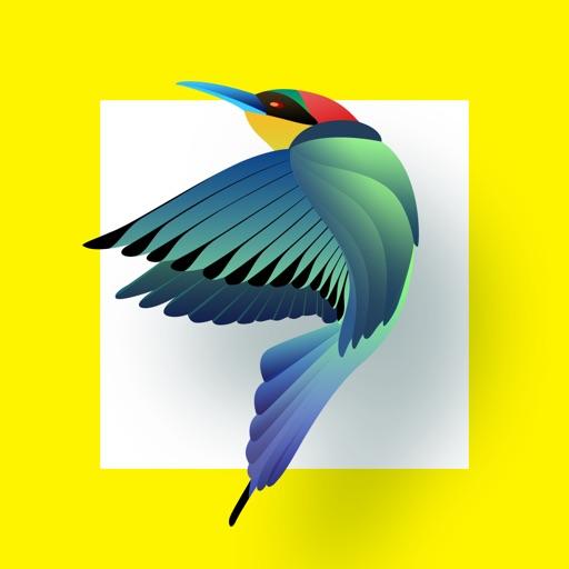 Bird Identification icon